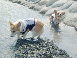 海の日・梅雨明け・水遊び♪